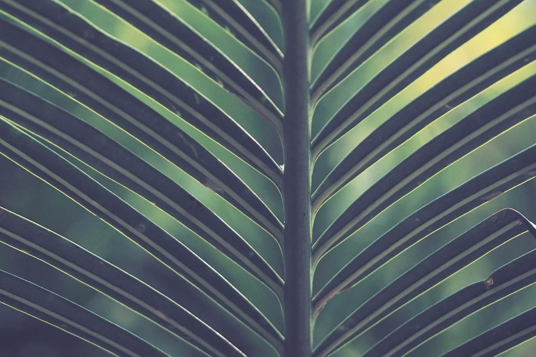 Sustainability Consulting - Mukanday